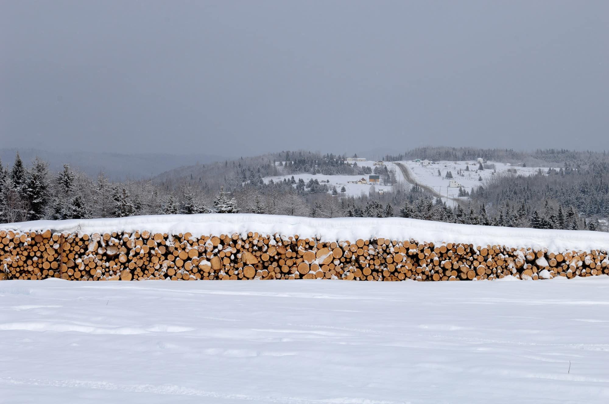 corde de bois dans la neige